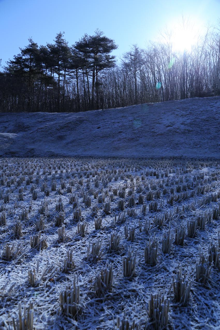20170311小雪の残る田んぼと朝日