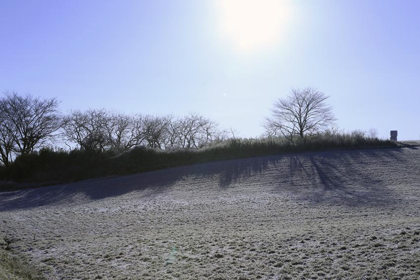 20170311朝陽と牧草地