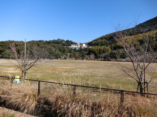 いつもの撮影ポイントじゃないけど、片渕公園です。