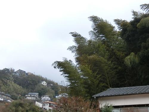 風も強いですね。