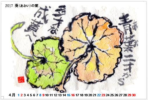 2017.04 ゼラニュームの葉