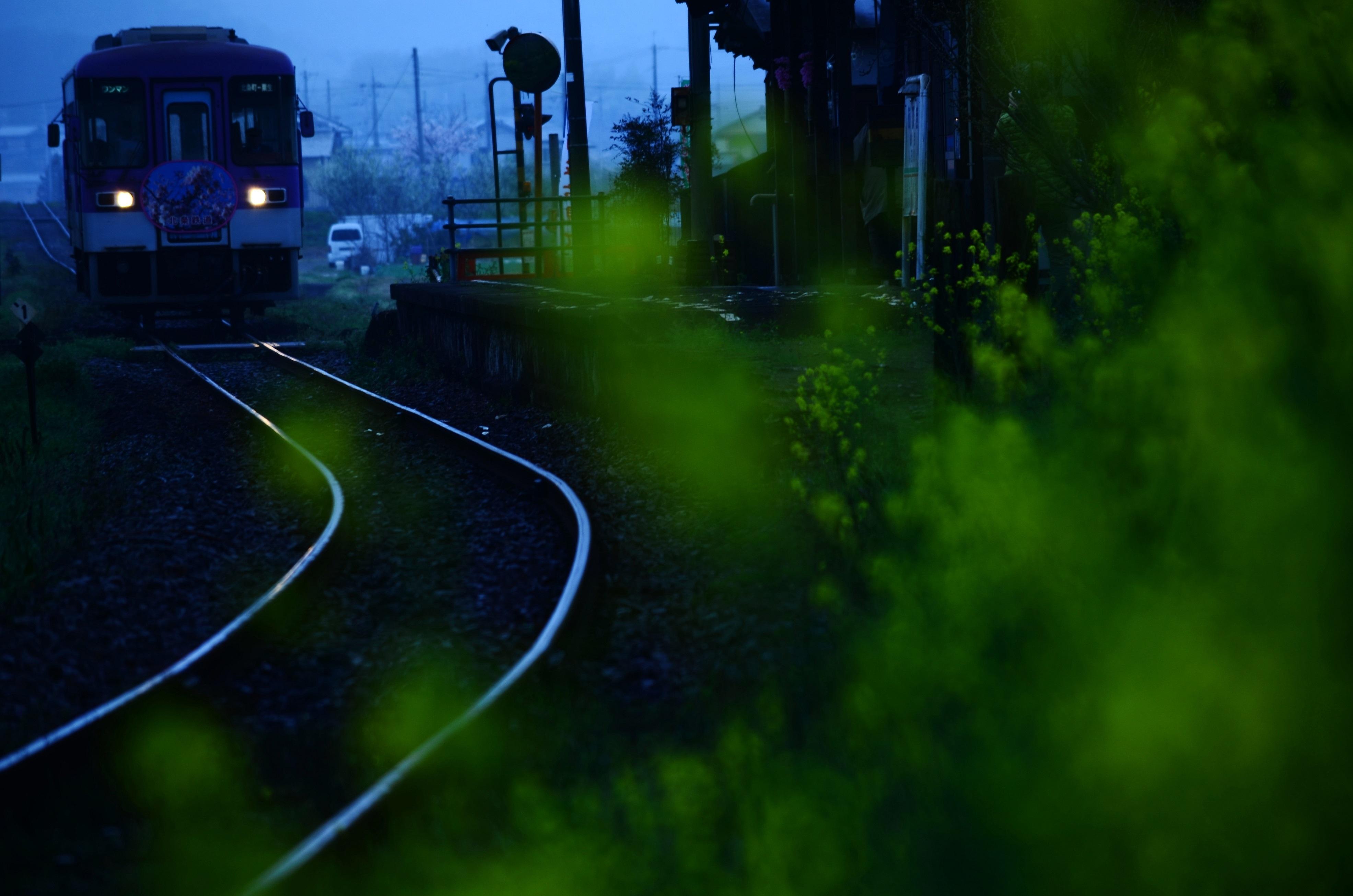 DSC_7454.jpg