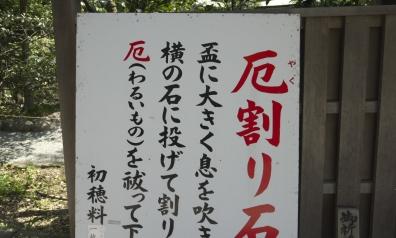 UMI08-053bb.jpg
