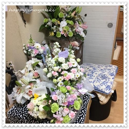 mini16IMG_0564-20170321.jpg