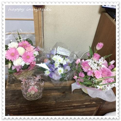 mini16IMG_0565-20170321.jpg