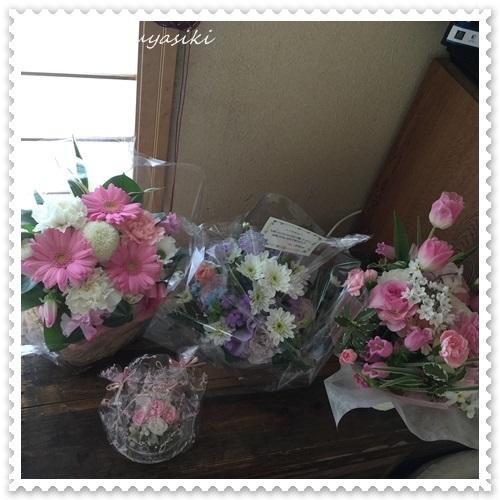 mini16IMG_0590-20170321.jpg