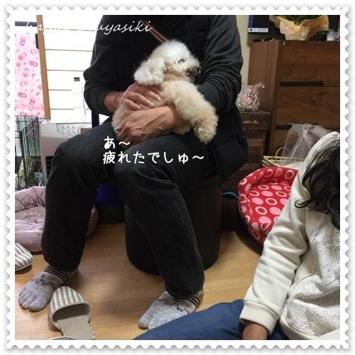 mini16IMG_1142-20170330.jpg