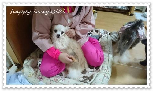 mini16IMG_1190-20170330.jpg