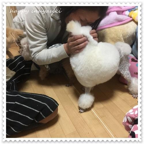 mini16IMG_8968-20170308.jpg
