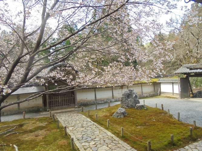 mikuruma2.jpg