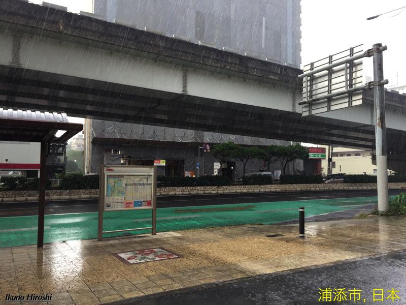 雨の安謝橋バス停