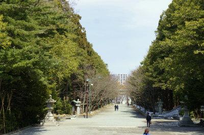 20174月北海道神宮