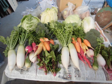 野菜の宅急便を5