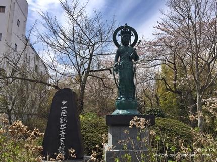 御幸山公園・観音山公園のソメイヨシノ [平成29年4月12日(水)更新]2-10