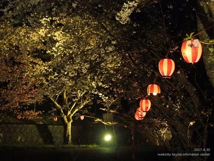 いわきの里鬼ヶ城「桜ライトアップ」レポート [平成29年4月30日(日)更新]7
