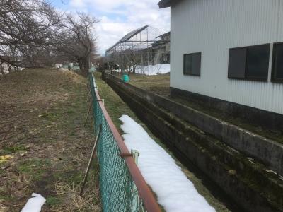 堀跡と思われる水路