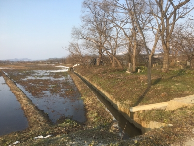 堀跡を利用したと思われる水路と北側墓地