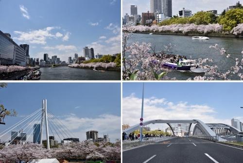 ⑦橋4風景