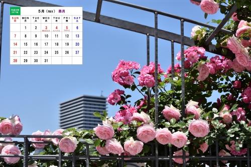 5月カレンダー2