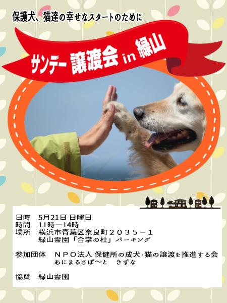 サンデー譲渡会in緑山5-21