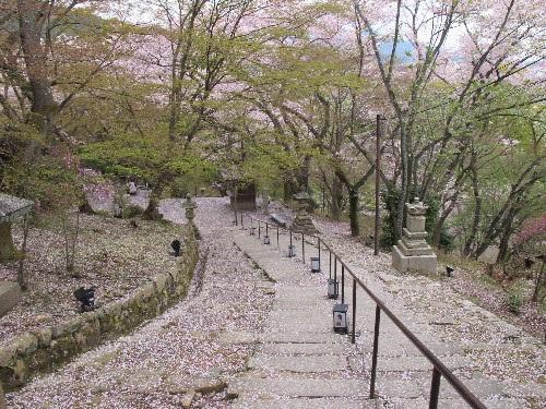 三井寺 (81)