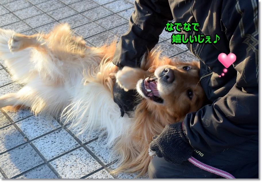 DSC_4973いっしっし~