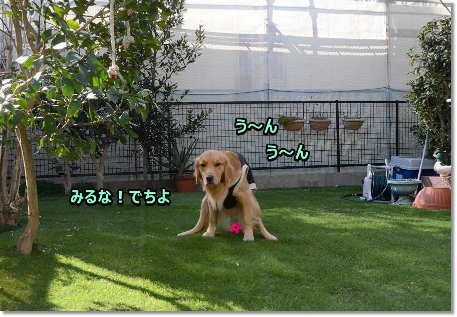 DSC_1189う~ん