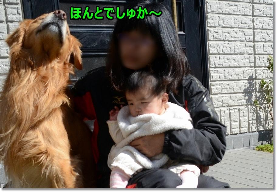 DSC_2044お裾分けお願い~
