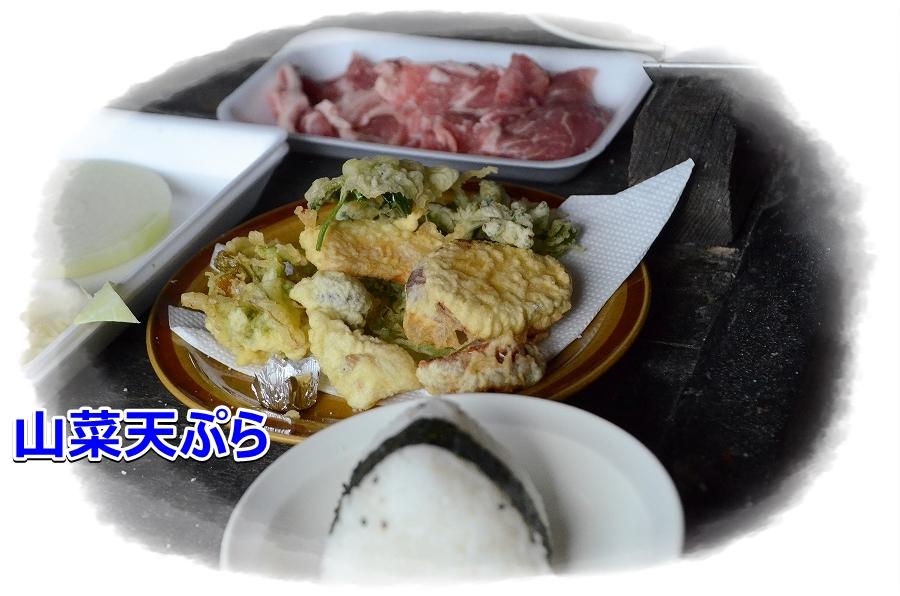 DSC_2785山菜てんぷら