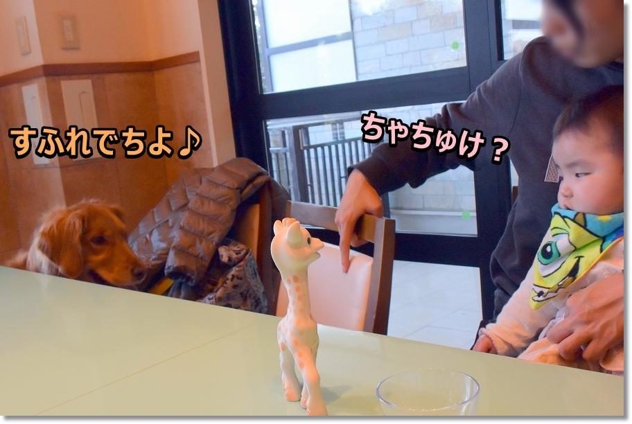 DSC_6344 カフェってましゅ