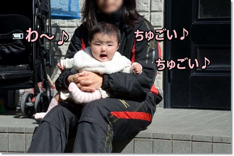 DSC_2072 サスケちゅごい