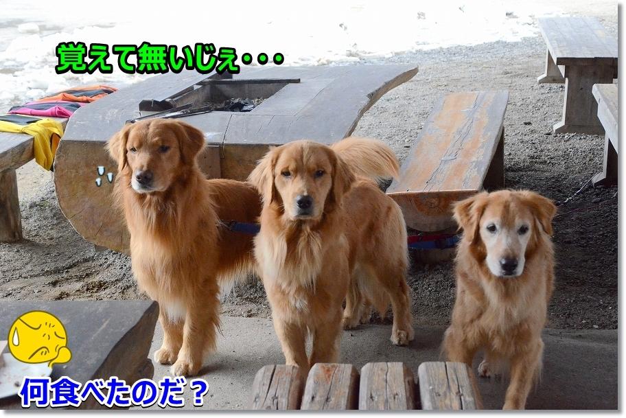 DSC_2830_20170410222256a17.jpg