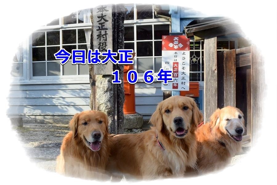 DSC_7027_20170411212912367.jpg