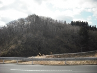 2017-03-16重箱石03