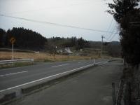 2017-04-09しろぷーうさぎ02