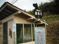 2017-04-12しろぷーうさぎ12