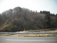 2017-04-16しろぷーうさぎ03