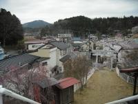 2017-04-21しろぷーうさぎ50