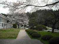 2017-04-19重箱石060