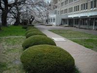 2017-04-19重箱石066