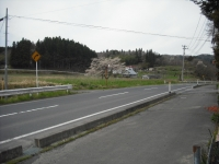 2017-04-27しろぷーうさぎ05