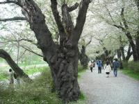 2017-05-05展勝地010