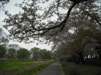 2017-05-05展勝地025