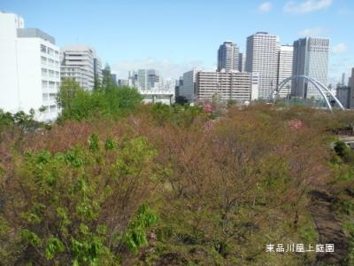 amanogawa1.jpg