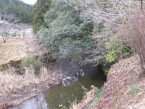 天竜川支流