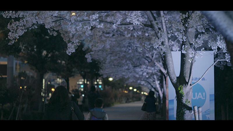 夜の散歩_13_s
