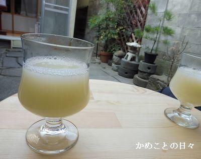 P1020120-c.jpg