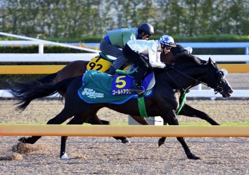 【天皇賞春】ゴールドアクターに乗る横山ノリ「不安なことはない。馬にやる気はあるよ。」