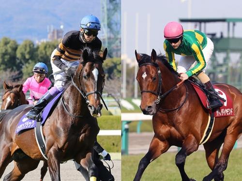 【競馬ネタ】それではキタサンブラックが勝った過去GⅠ4勝の2着馬をご覧ください