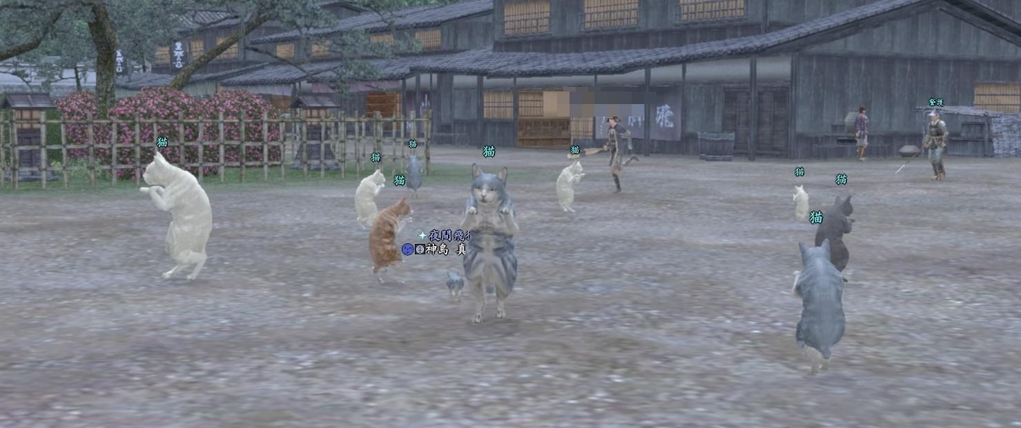 222踊り